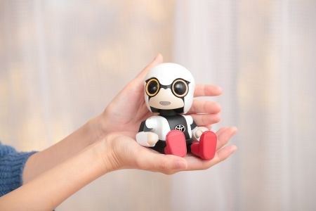 Kirobo Mini (2)
